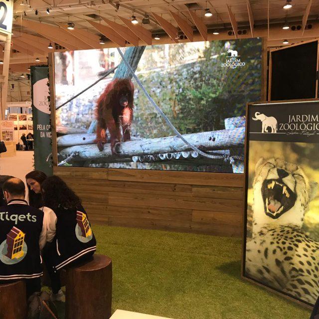 BTL 2019 - Stand Jardim Zoológico